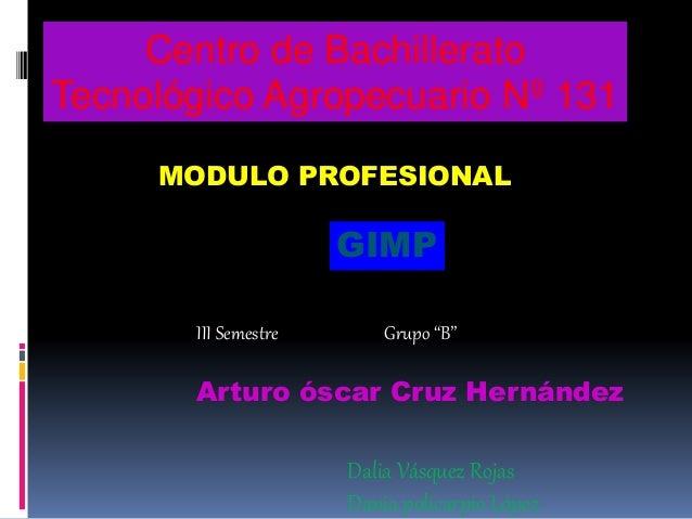 """Centro de Bachillerato Tecnológico Agropecuario Nº 131 GIMP III Semestre Grupo """"B"""" Arturo óscar Cruz Hernández Dalia Vásqu..."""