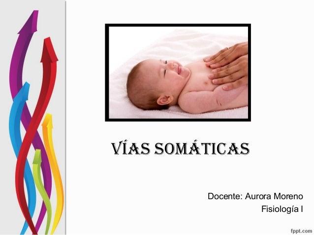 VÍAS SOMÁTICAS Docente: Aurora Moreno Fisiología I
