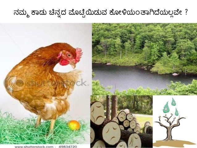 Vasunadariyam -protect our planet Slide 3