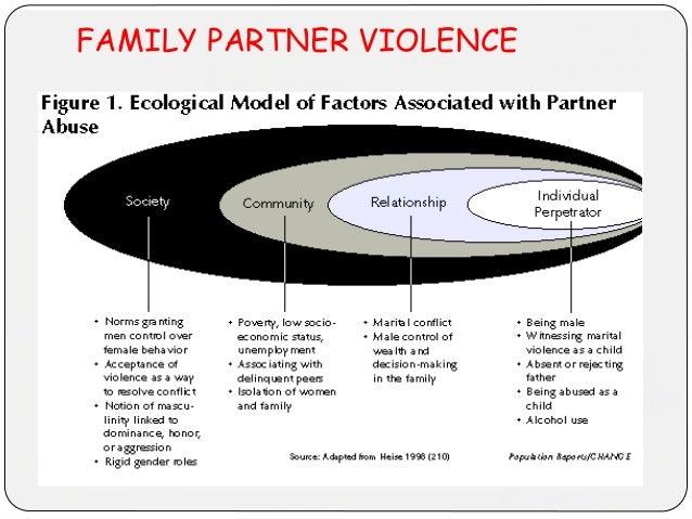 FAMILY PARTNER VIOLENCE