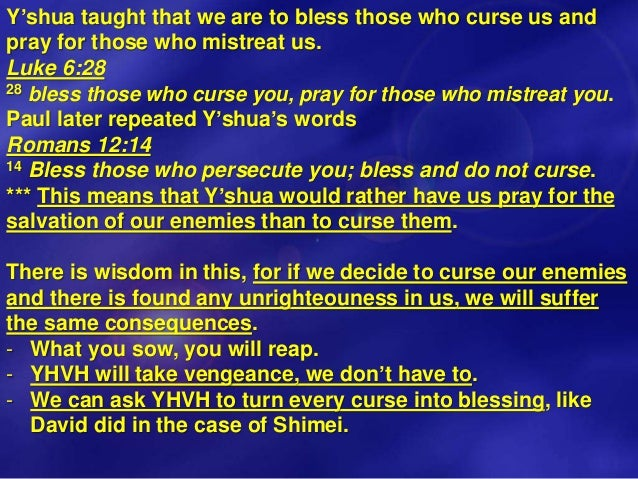Vayechi Blessings, Curse, Twelve Tribes of Israel, Grafted In