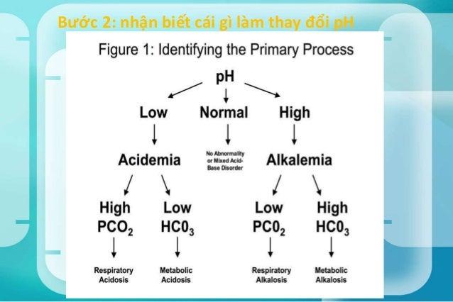  Tính anion gap.  Nếu anion gap tăng: xét Δ AG/ Δ HC03:  < 1:Toan CH ↑ AG +Toan CH không ↑AG  1- 2:Toan CH ↑ AG đơn th...