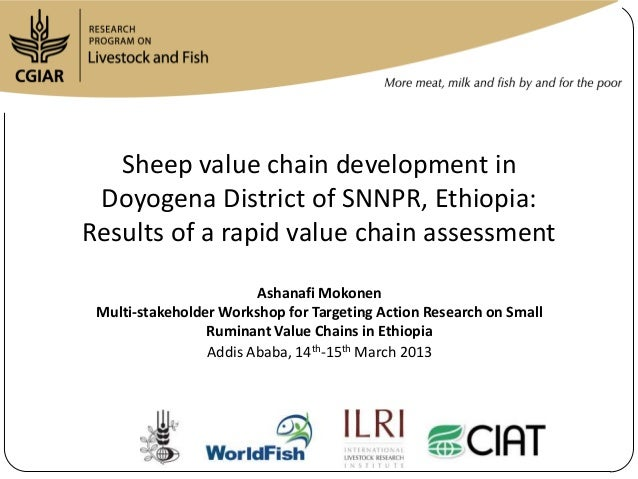 Sheep value chain development in Doyogena District of SNNPR, Ethiopia:Results of a rapid value chain assessment           ...