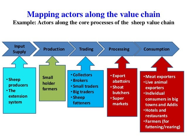 basic concepts of value chain analysis for sheep and goat