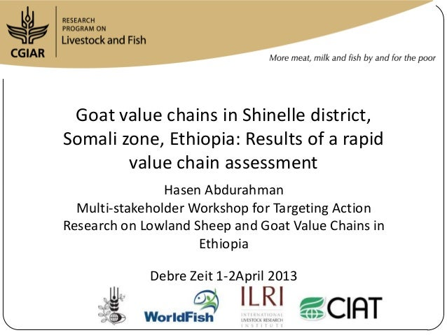Goat value chains in Shinelle district, Somali zone