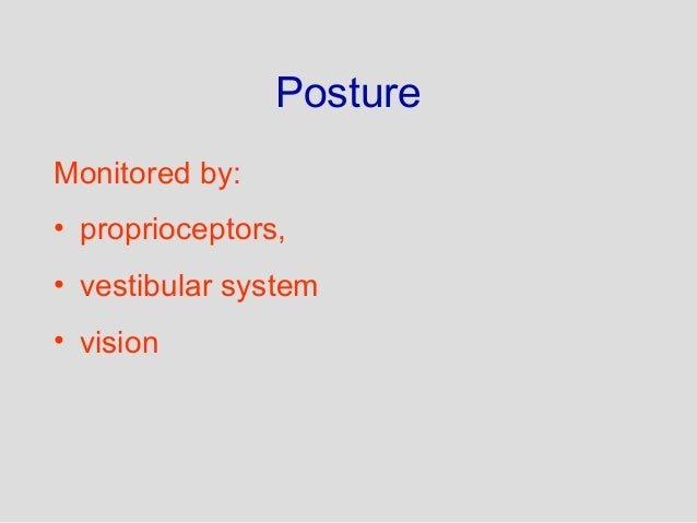 Anatomy and Physiology of Motor disorder
