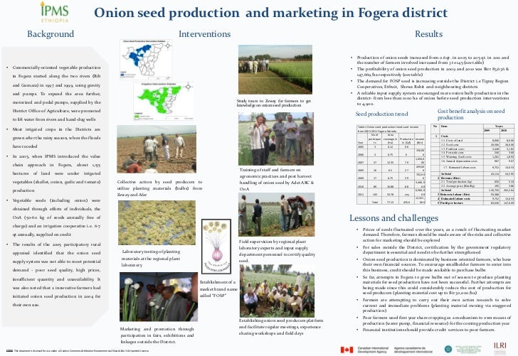 Onion seed production  and marketing in Fogera district               Background                                          ...