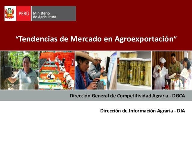 """""""Tendencias de Mercado en Agroexportación"""" Dirección General de Competitividad Agraria - DGCA Dirección de Información Agr..."""