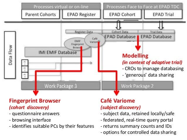 ePAD project Slide 3