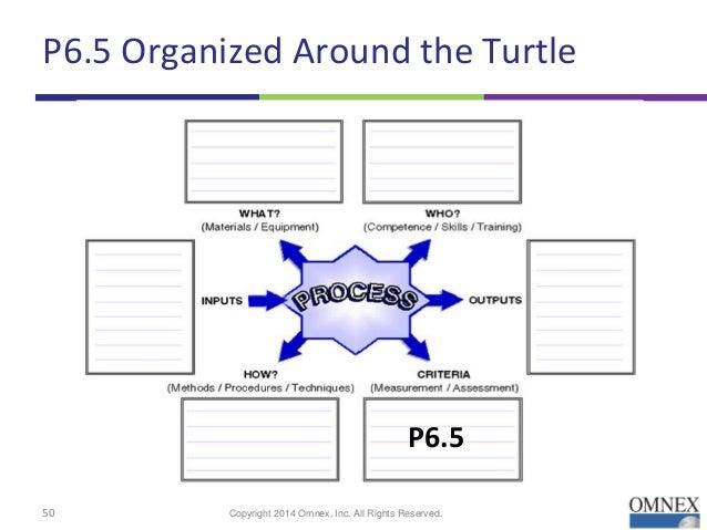 a turtle diagram hr wiring diagrams control Sea Turtle Diagram a turtle diagram hr wiring diagram turtle training diagram a turtle diagram hr
