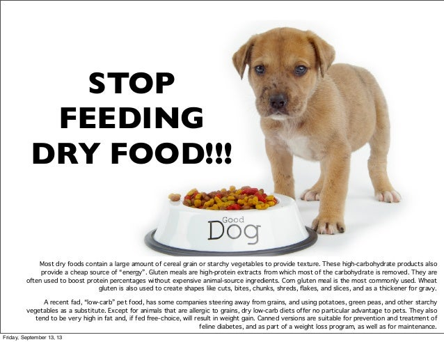 Low Carb Dog Food For Cancer