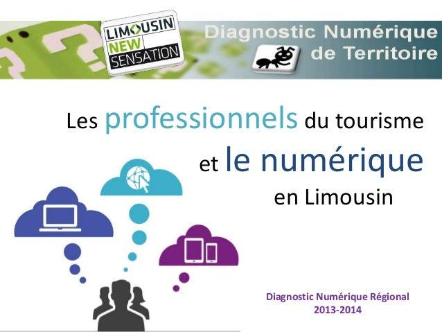 Les professionnels du tourisme et le numérique en Limousin Diagnostic Numérique Régional 2013-2014