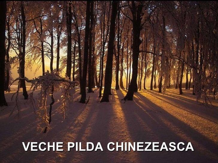 VECHE PILDA CHINEZEASCA