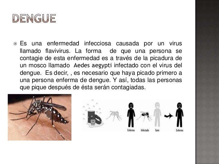    Es una enfermedad infecciosa causada por un virus    llamado flavivirus. La forma de que una persona se    contagie de...