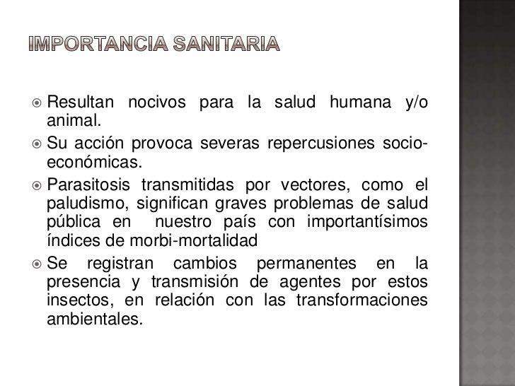  Resultan nocivos para la salud humana y/o  animal. Su acción provoca severas repercusiones socio-  económicas. Parasit...
