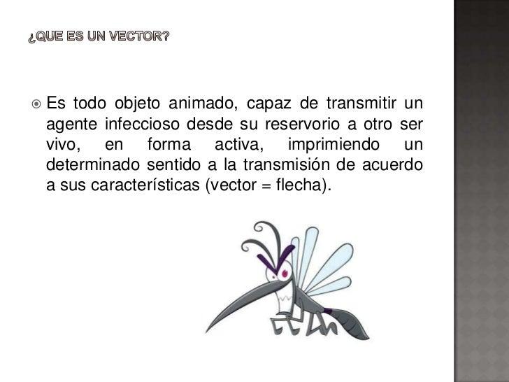    Es todo objeto animado, capaz de transmitir un    agente infeccioso desde su reservorio a otro ser    vivo, en forma a...