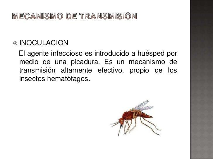    INOCULACION    El agente infeccioso es introducido a huésped por    medio de una picadura. Es un mecanismo de    trans...