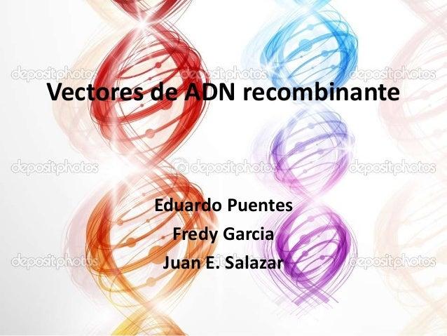 Vectores de ADN recombinante  Eduardo Puentes Fredy Garcia Juan E. Salazar