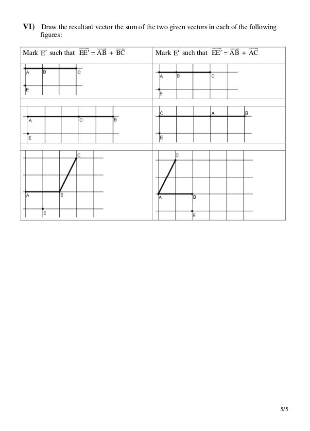 Vectors and translations worksheet – Vector Worksheet