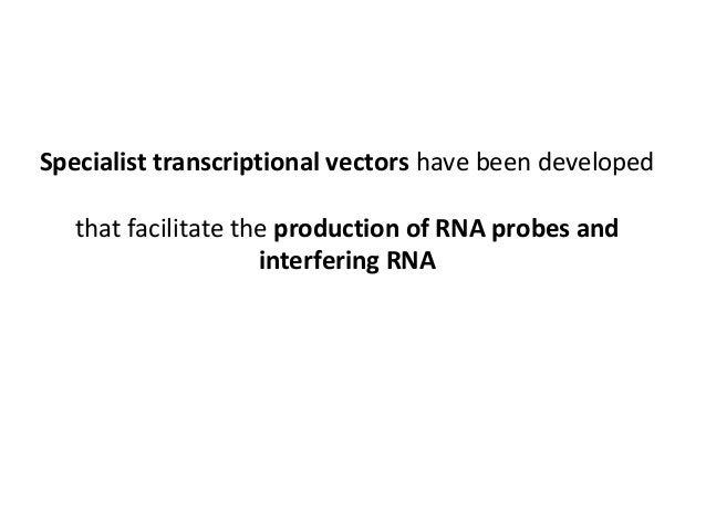 To make dsRNA: If the single stranded templates thus generated, are mixed and used for in vitro transcription then double-...