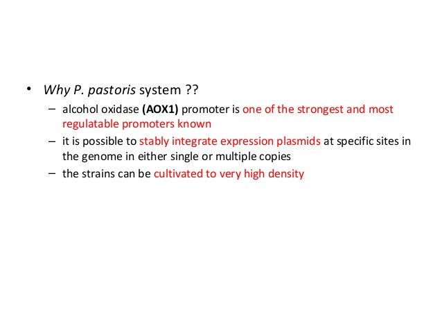 3. The inclusion of a polyadenylation signal • to generate a defined 3′ end to the mRNA • In most cases, this defined end ...