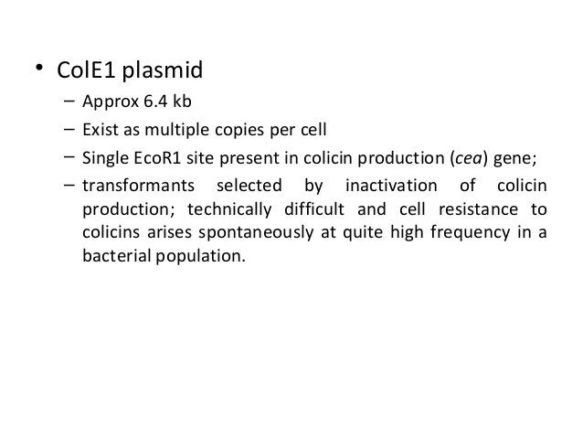 • ColE1 plasmid – – – –  Approx 6.4 kb Exist as multiple copies per cell Single EcoR1 site present in colicin production (...