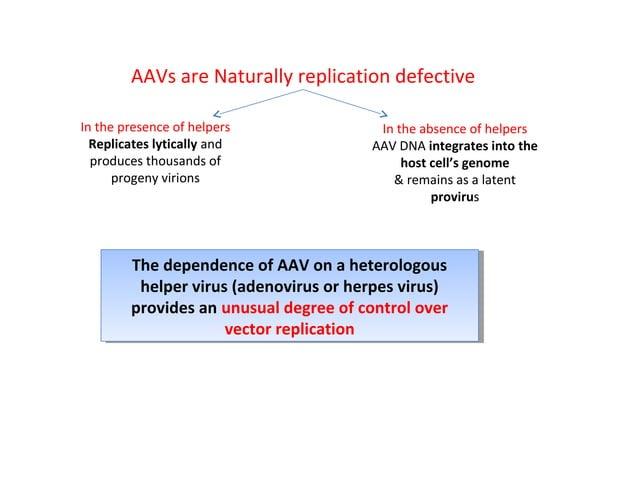 3. Retroviruses Retroviruses are RNA viruses that replicate via a dsDNA intermediate  Structure of an integrated provirus,...