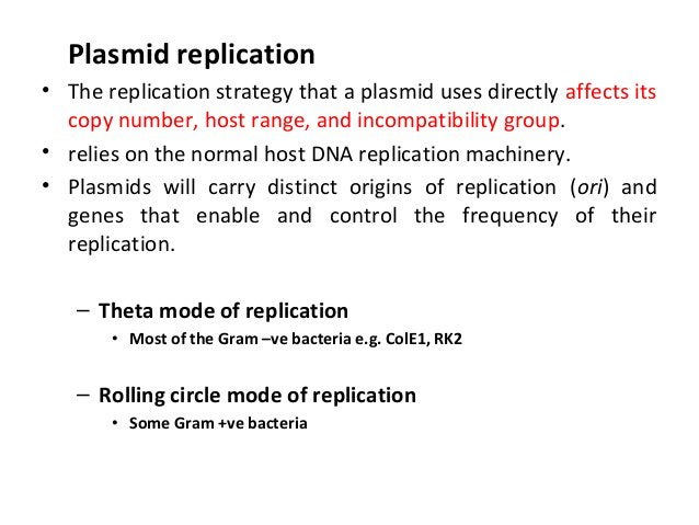 Plasmid replication • The replication strategy that a plasmid uses directly affects its copy number, host range, and incom...