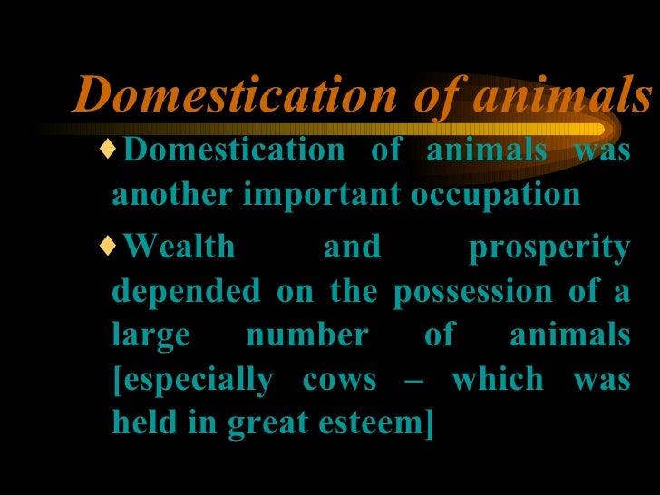 Domestication of animals <ul><ul><ul><li>Domestication of animals was another important occupation </li></ul></ul></ul><ul...