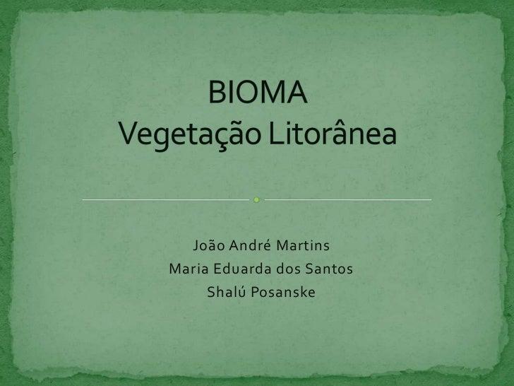BIOMAVegetação Litorânea<br />João André Martins<br />Maria Eduarda dos Santos<br />Shalú Posanske<br />