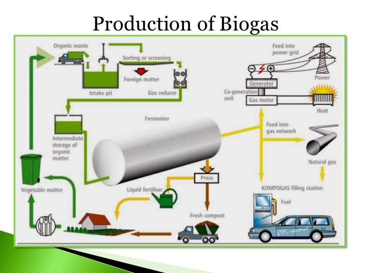 Vegetable oil and biofuel industry [autosaved] [autosaved] [autosaved]