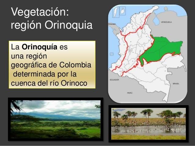 Vegetacin en colombia
