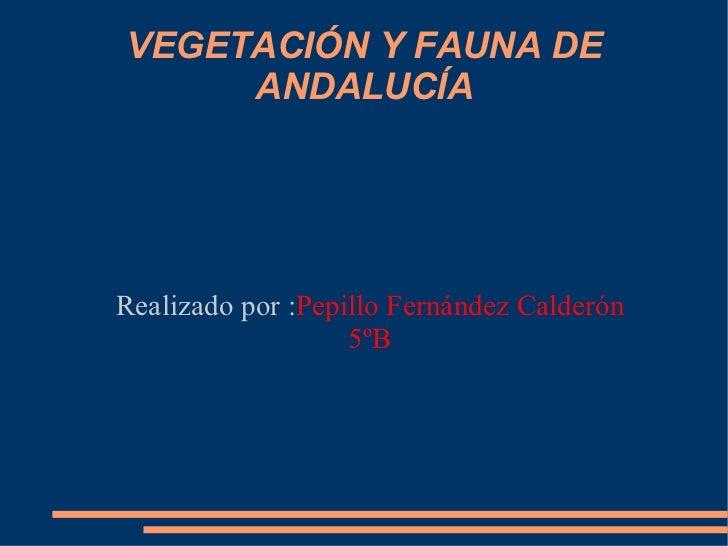 VEGETACIÓN Y FAUNA DE ANDALUCÍA Realizado por : Pepillo Fernández Calderón 5ºB