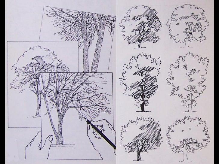 Vegetaci n y figura humana for Croquis un libro de arquitectura para dibujar pdf