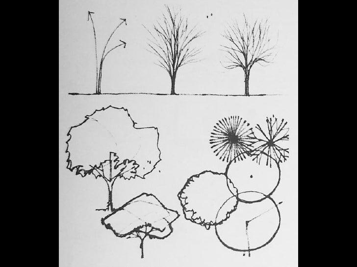Vegetaci n y figura humana for Representacion arquitectonica en planos