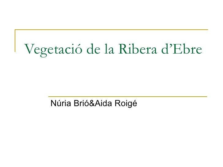 Vegetació de la Ribera d'Ebre Núria Brió&Aida Roigé