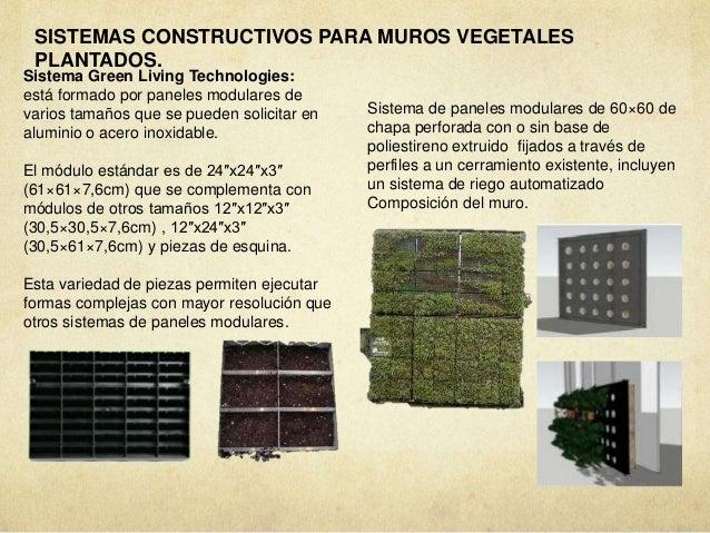 Vegetacion azoteas verdes muros verdes huertos urbanos for Muro verde sistema constructivo