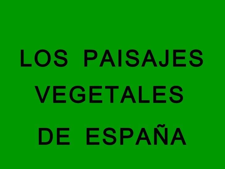 <ul><li>LOS PAISAJES VEGETALES  </li></ul><ul><li>DE ESPAÑA </li></ul>