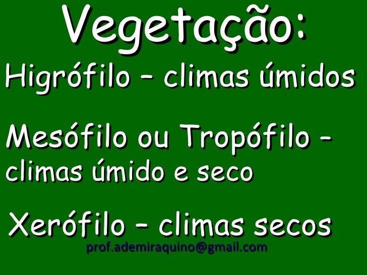 Vegetação:Higrófilo – climas úmidosMesófilo ou Tropófilo –climas úmido e secoXerófilo – climas secos     prof.ademiraquino...