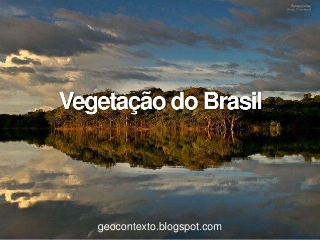 Vegetação do Brasil   geocontexto.blogspot.com