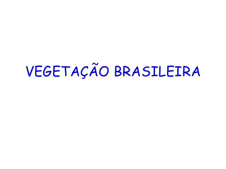 VEGETAÇÃO BRASILEIRA