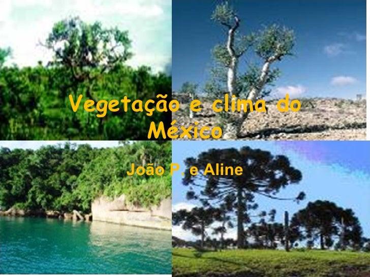 Vegetação e clima do      México    João P. e Aline