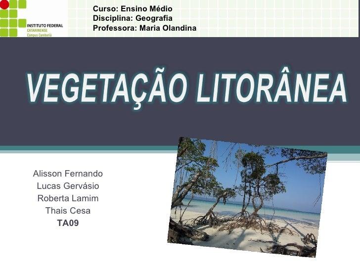 Alisson Fernando Lucas Gervásio Roberta Lamim Thais Cesa TA09 Curso: Ensino Médio  Disciplina: Geografia Professora: Maria...