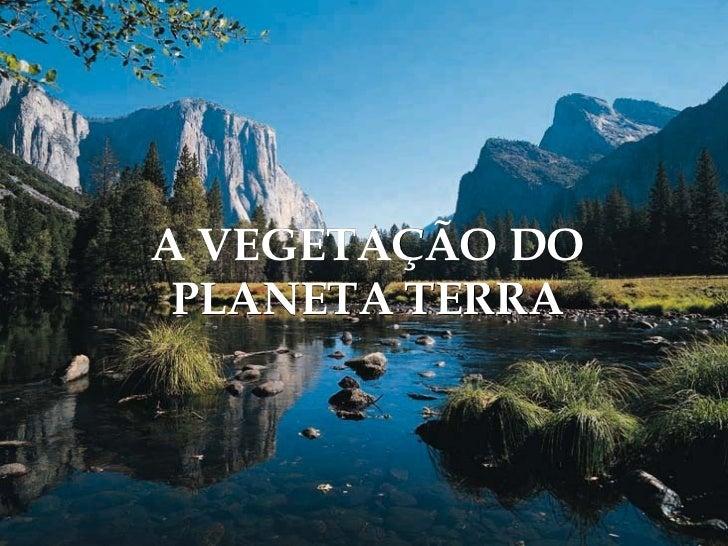 A VEGETAÇÃO DO PLANETA TERRA