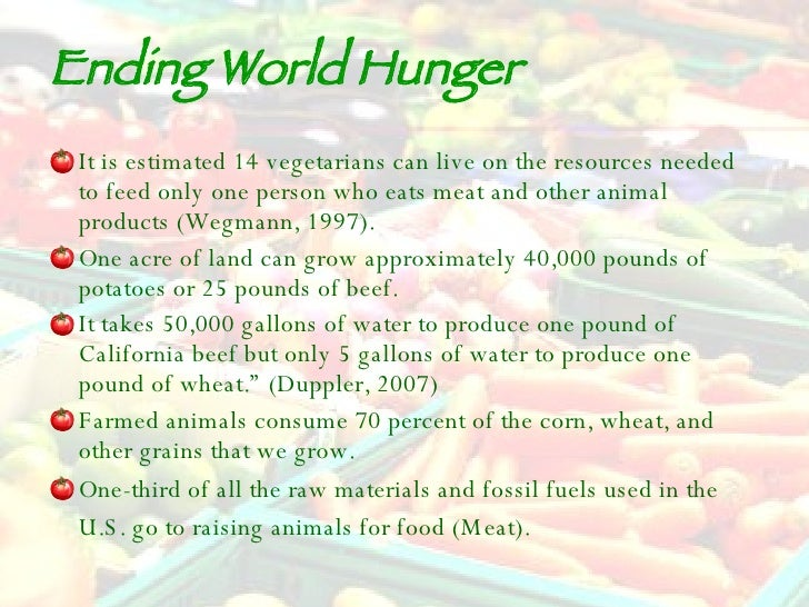 how to help stop world hunger
