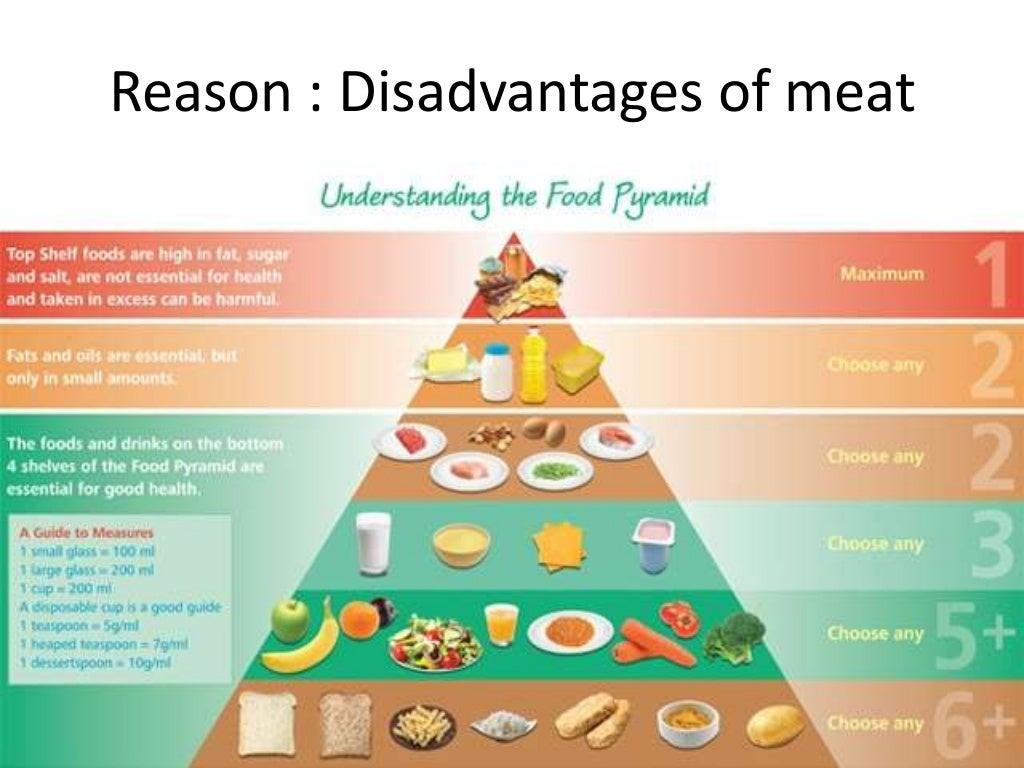 Argumentative essay: Vegetarian Diet