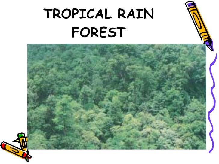 vegetation of india