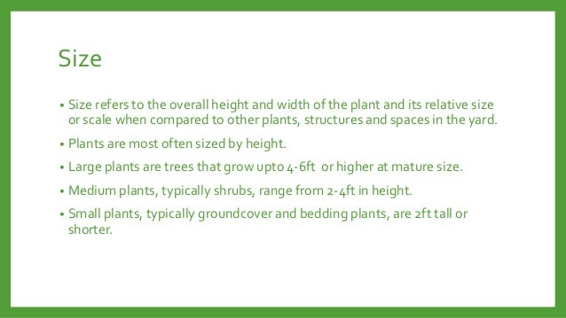 Size •  Size refers to the overall height and width of the plant and its relative size or scale when compared to other pla...