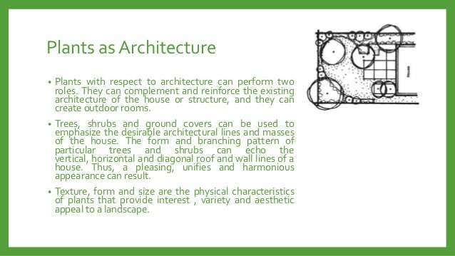 Plants as Architecture Plants with respect to architecture can perform two roles. They can complement and reinforce the ex...