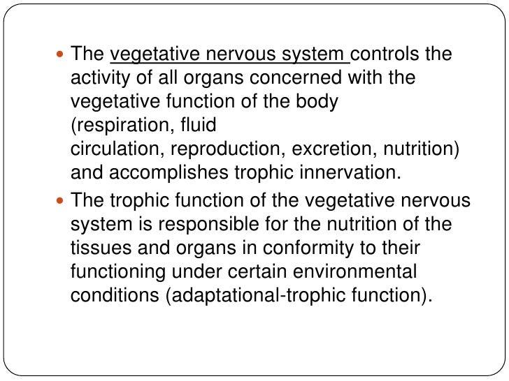 Vegetative (autonomic) system Slide 2